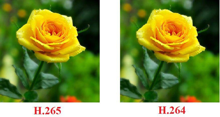 So sánh chuẩn H.265 Và H.264